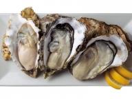 牡蠣を愛するあの人の、おすすめプレート  VOL. 05