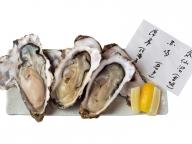 牡蠣を愛するあの人の、おすすめプレート  VOL. 01