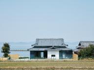 ウミトタ【香川県/豊島】