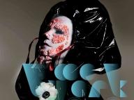 ビョーク本人によるDJパフォーマンスも!「Björk Digital ―音楽のVR・18日間の実験」が日本科学未来館で開催
