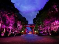 世界遺産が光のアートに! チームラボが京都・下鴨神社をライトアップ