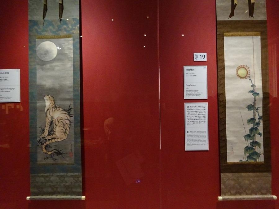 ゴッホの「ひまわり」以前に、北斎が「画狂老人卍」として「ひまわり」を描いていました。「向日葵図」を描くことで、死を前に生命力を感じたかったのかもしれません。