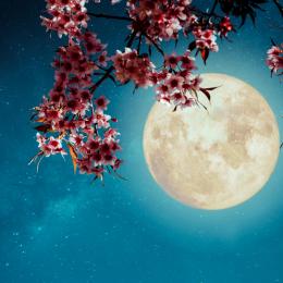 今年の2回目の「元日」にすべきこととは? 「アモーレ占星術」3月後半の運勢を更新