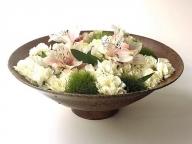 春のインテリアに取り入れたい白い花
