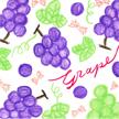 葡萄のあなたは、眠り姫タイプ