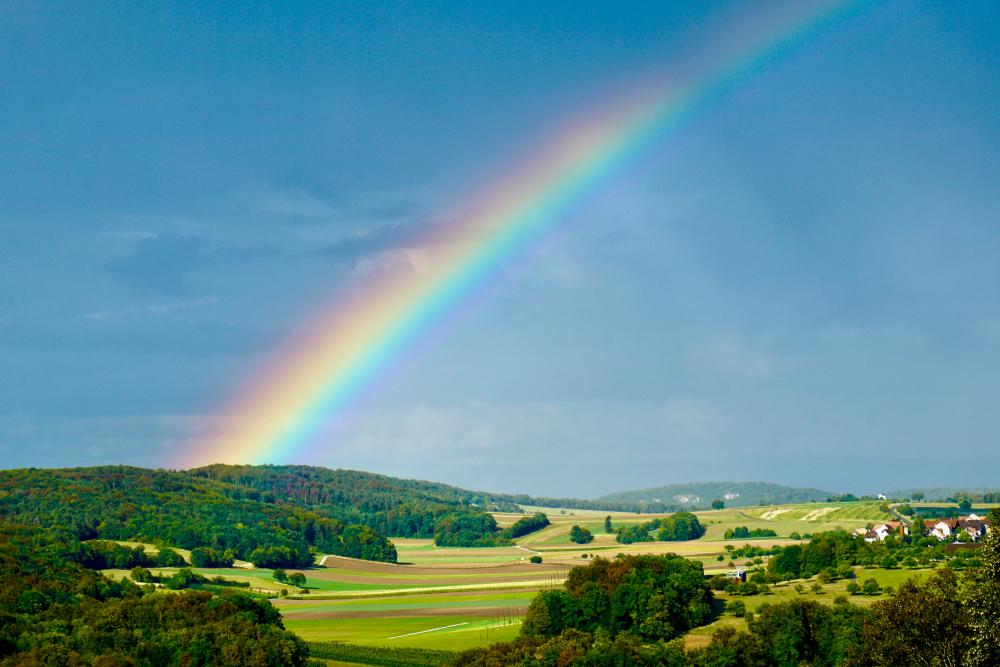 """""""雨のち虹""""を待つ大切さ。虹のタイミングを逃さないようにしたいですね。"""