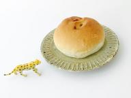 SPURおやつ部が見つけた、しあわせのパン
