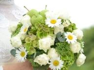 クリエイターカップルを祝う可憐な花々