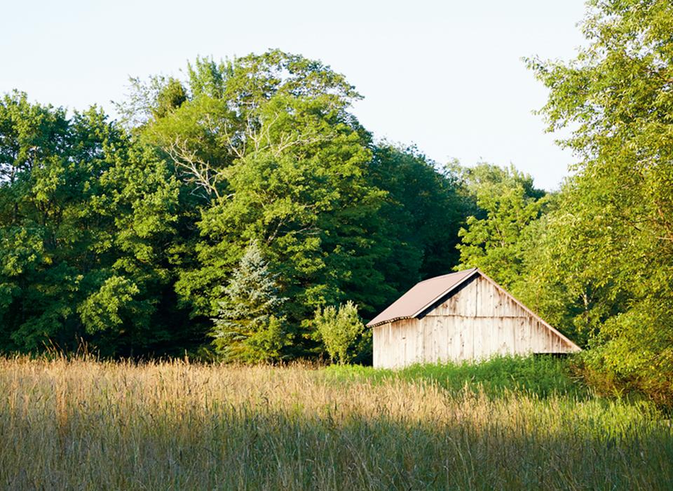 サリバン郡の農場に広がる草地