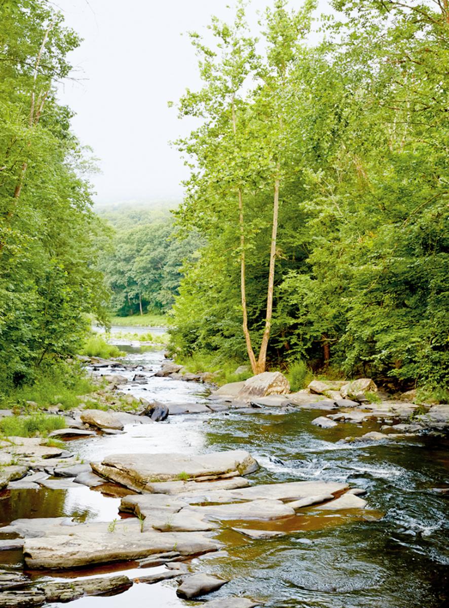 サリバン郡に点在する小さな町の間を縫うよう流れる、デラウェア川の支流