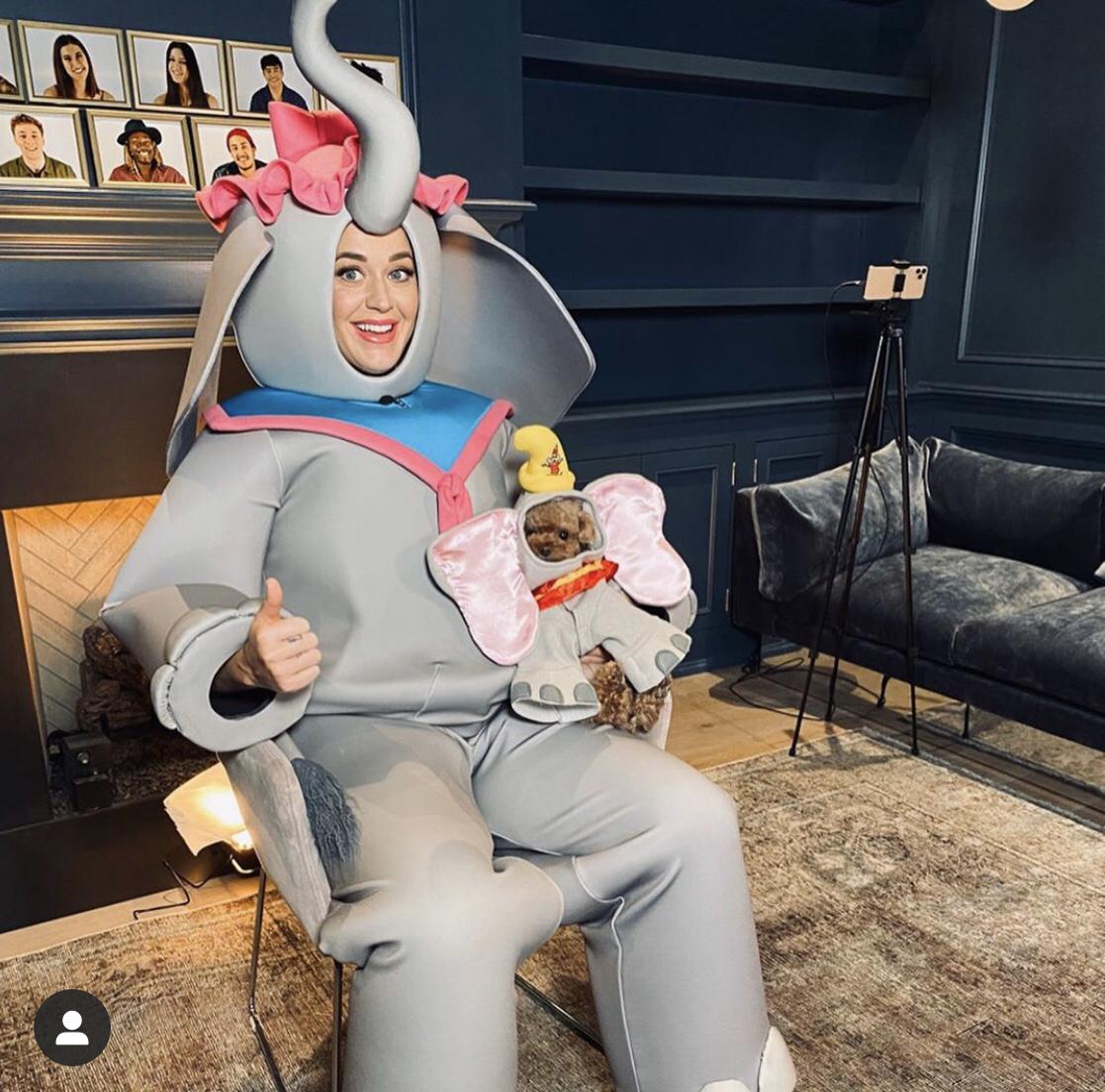 【5月11日】愛犬と映画『ダンボ』のコスチュームを着た理由は?
