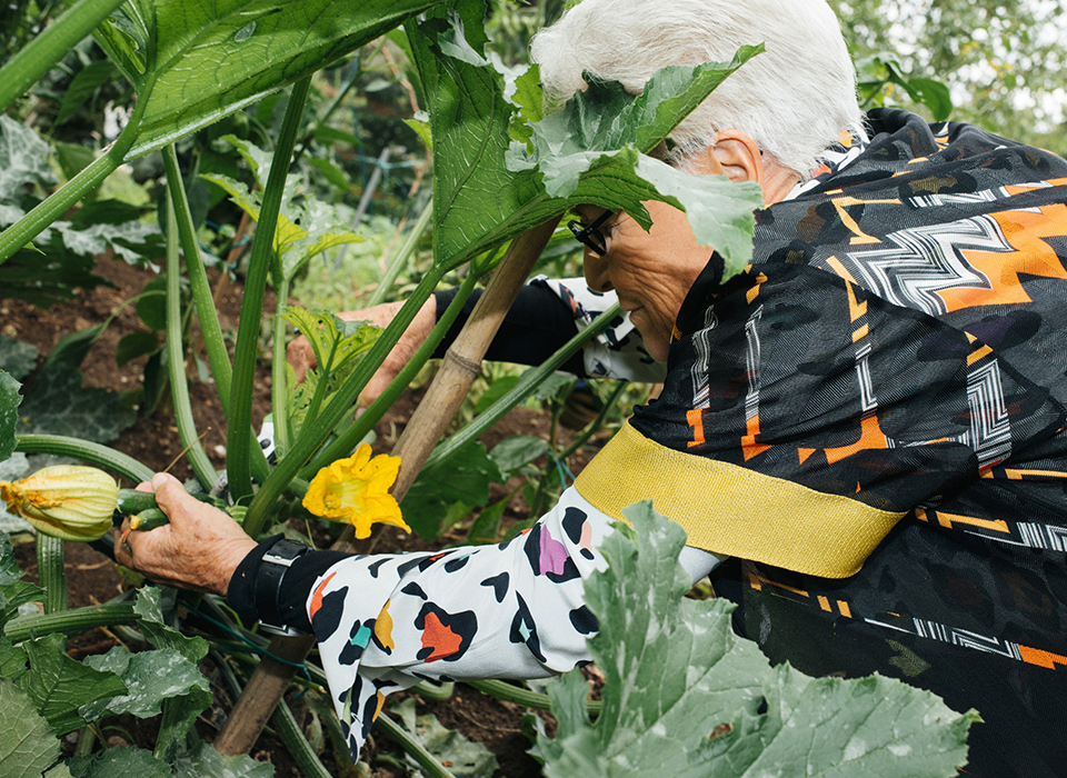 ミッソーニは、その年齢とは思えないほどエネルギッシュで活発だ。 スキューバ・ダイビングを愛好する彼女は、 延々と広がる庭園を2時間ものあいだ散策しても疲れを見せない。 写真は、キッチンに持っていくズッキーニを収穫しているところ