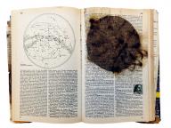 芸術と先端科学のコラボレーションを目指すアーティストたち