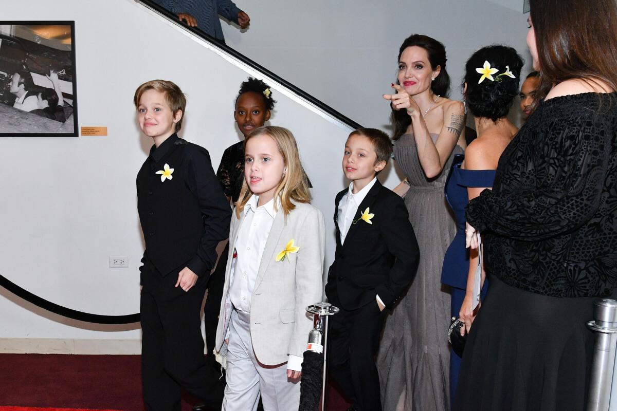 2008年には、ノックス・レオンくん(中央右)とヴィヴィアン・マーシェリンちゃん(中央左)の双子を出産したアンジェリーナ・ジョリー。