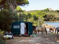馬と緑とキャンピング・カーと。トスカーナの海岸で過ごす夏