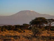 """神秘的な風景と野生動物""""自然からの贈り物""""を心で感じるケニアへの旅"""
