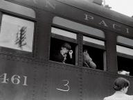"""20世紀アメリカの""""真実""""を写した報道写真家ドロシア・ラングの生涯"""