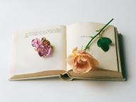 庭園を彩る花の詩情を摘みとって