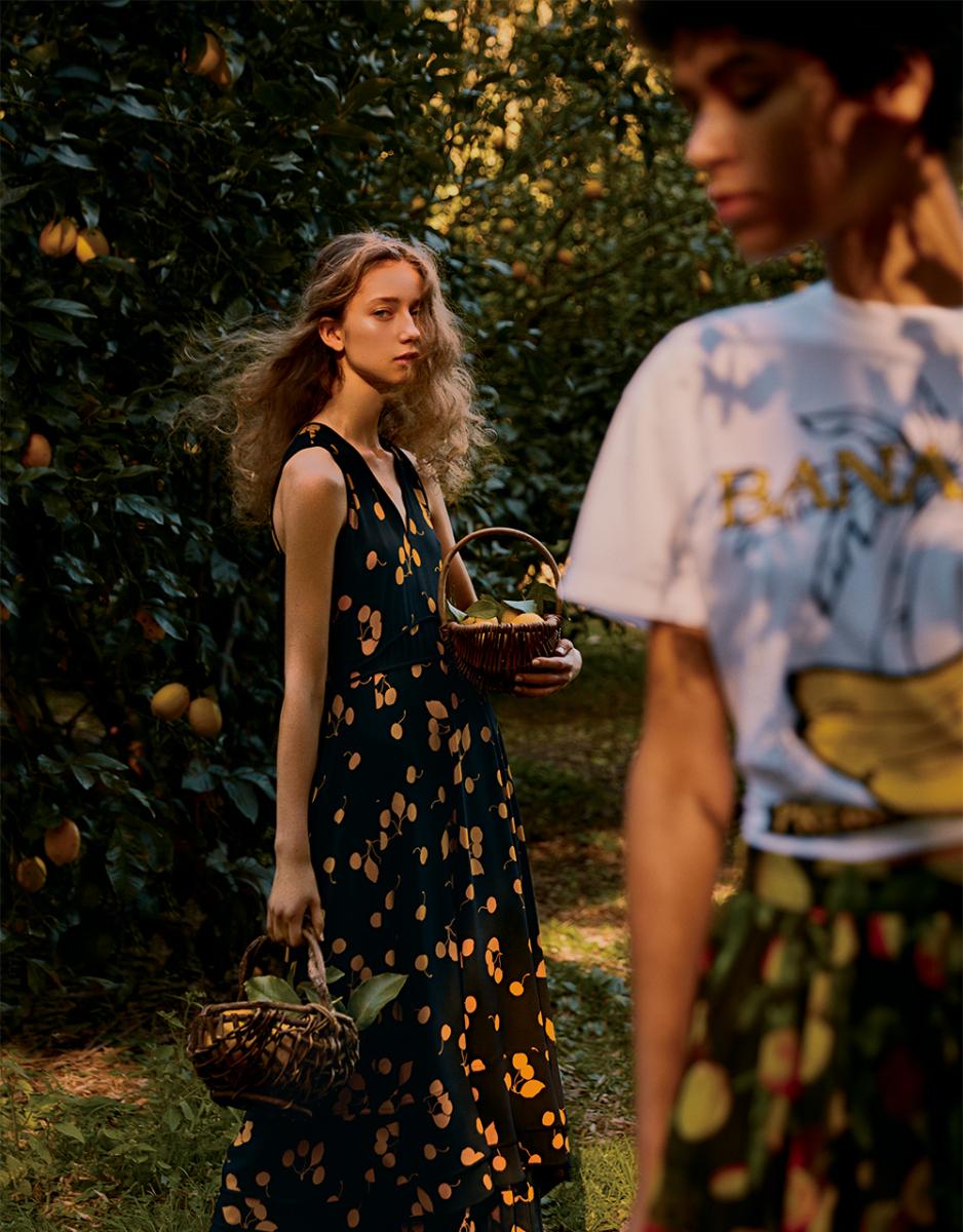 色とりどりの果実に包まれる、果樹園の午後