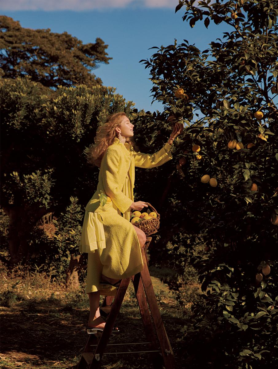 青空と檸檬の木の下、 幸福の予感に輝いて