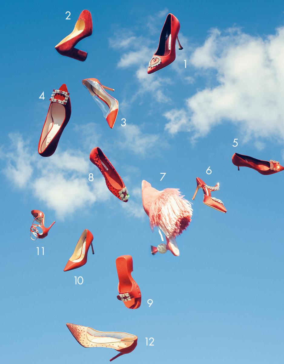 空を舞い踊る赤い鳥