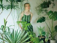 植物を部屋に飾る