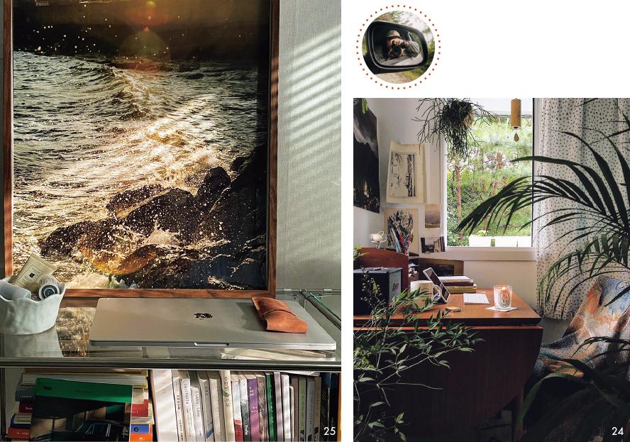 「森の中にある家」をコンセプトに自然を感じるインテリアを