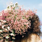 いま、私たちが大切にしたい時間。花と暮らす
