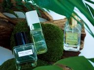 楽園フレグランス  -香りが連れ出すマインドトリップ-