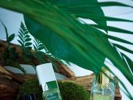 朝露を浴びて立ち上るグリーンの香り