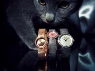 """Dior Timepieces の""""ラ デ ドゥ ディオール"""""""