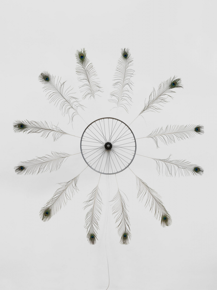 """Did you rest ?"", 2016. Aluminum, peacock feathers, engine. Diameter : 215 cm 