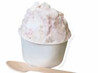 パパブブレ GINZA SIX店限定! -196℃の液体窒素で作る究極のフレッシュジェラート