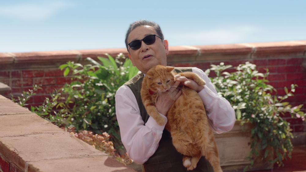 """タモリの抱く""""タモ猫""""も名演技を披露。"""