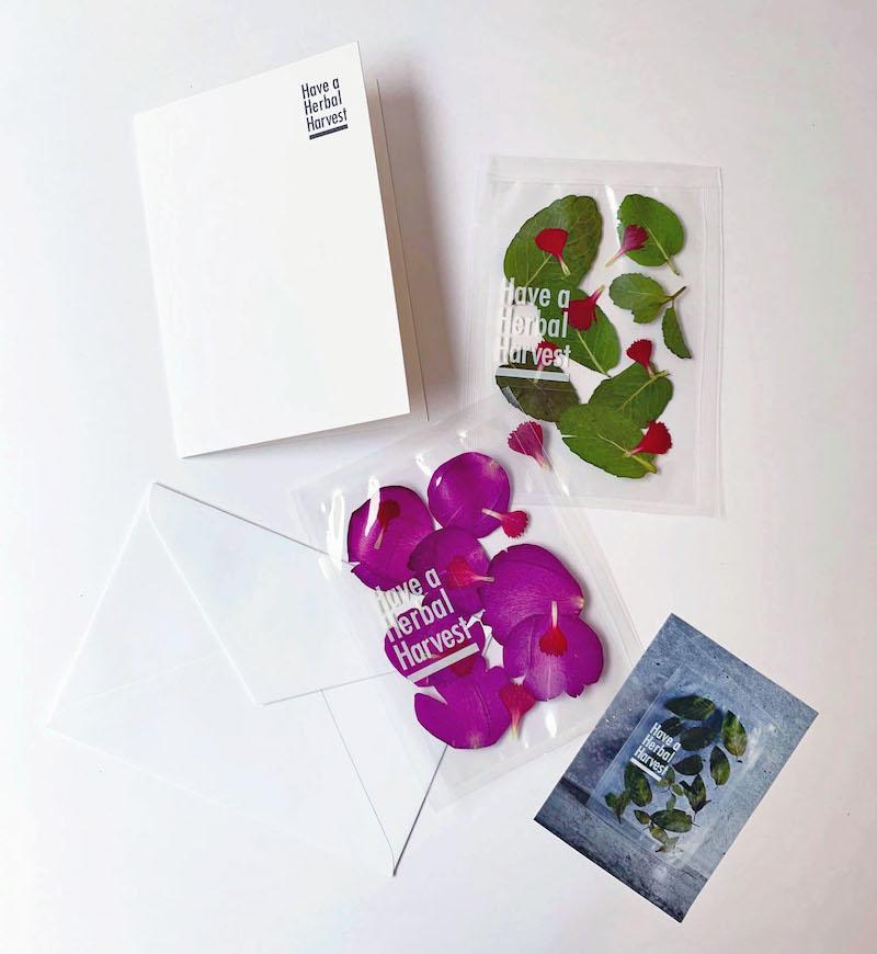 手紙とともに気軽に送れるレターセット仕様のハーブティーは、家族や友達となかなか会えない時期の贈り物にぴったり。