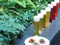 過ぎ行く夏を惜しみつつ、都会の森で乾杯!「ザ・カフェ BY アマン」の贅沢ビアガーデン