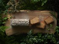 杉が香る絶品ケーキ!  LIFULL Tableで「Eatree Cake 〜木から生まれたケーキ〜」を期間限定販売
