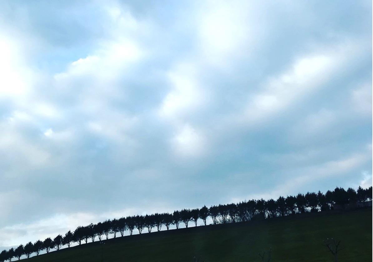 今年3月に仕事で訪れた南フランスのトゥールーズ。この景色に、ハードなスケジュールも癒される。