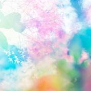 【フランチェスカ先生の愛のメッセージ】今こそ、咲きほこる時!