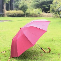 暴風雨でもおちょこにならない折りたたみ傘 #深夜のこっそり話 #1036