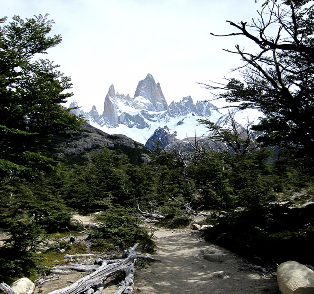 ダイナミックなひとりっぷにオススメの南米。中でもアルゼンチンは土地によって気候も雰囲気もいろんな要素が詰まっていて、オススメ