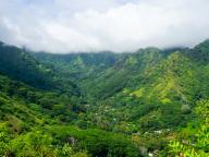 この島では濃い緑を堪能しまくりたくなる! ひとりっPおすすめ島めぐりスポットBEST 3!(モーレア島)