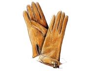 今年の手袋 ― クリスマスに読む、冬の服のはなし ―