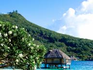 ひとりっぷにおすすめホテル『マイタイ・ポリネシア・ボラボラ』(ボラボラ島)