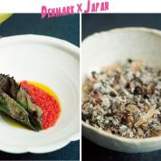 デンマーク×日本の技術が結集。発酵はその先へ