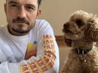 愛犬との別れを報告したオーランド・ブルーム、追悼の意を込めてタトゥーを入れる
