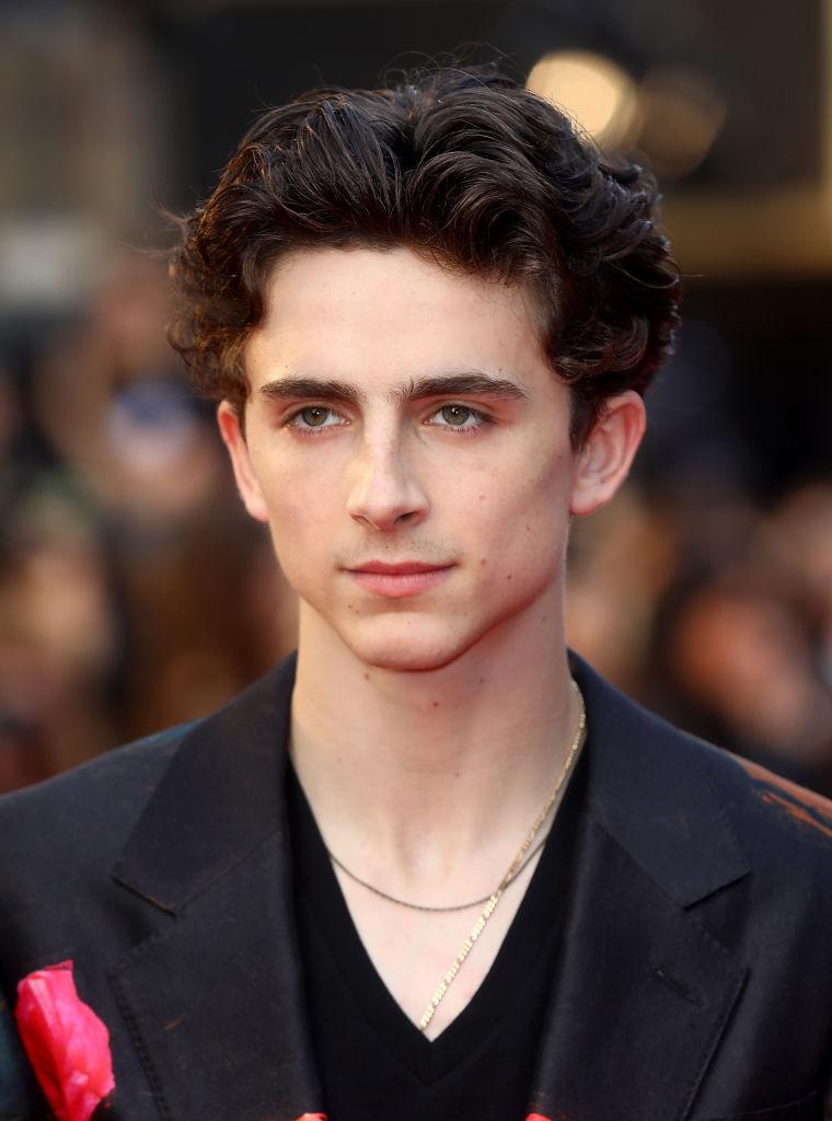 アカデミー賞主演男優賞にノミネートされるなど、俳優として躍進中のティモシー。