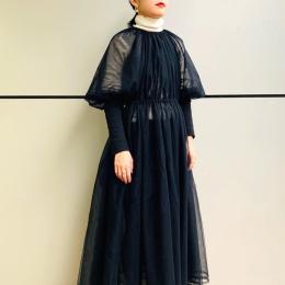 オーガンジーのブラックドレス <11月28日、編集S>