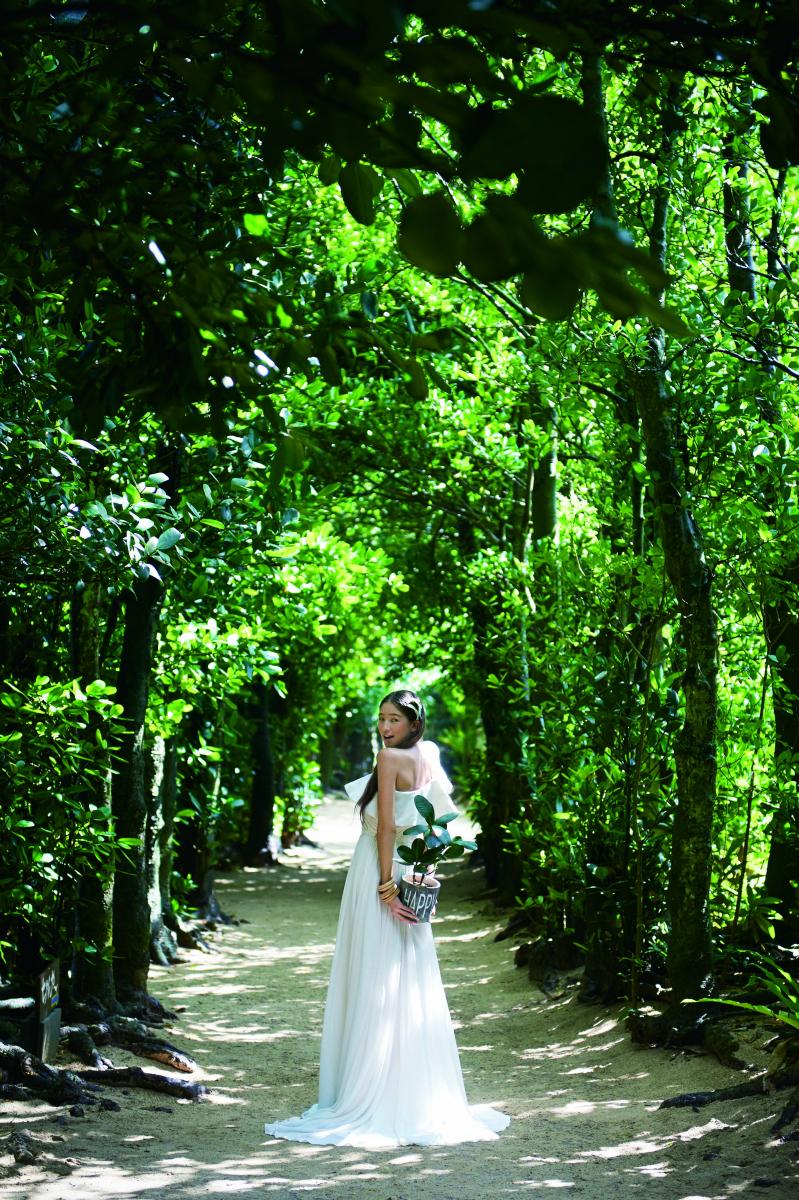 やんばるの森の中で緑あふれるロケーションフォトが叶う