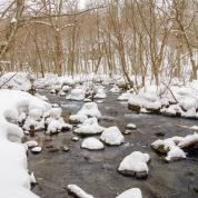 絶景エンジョイ! 雪を楽しむ&雪と遊ぶ!